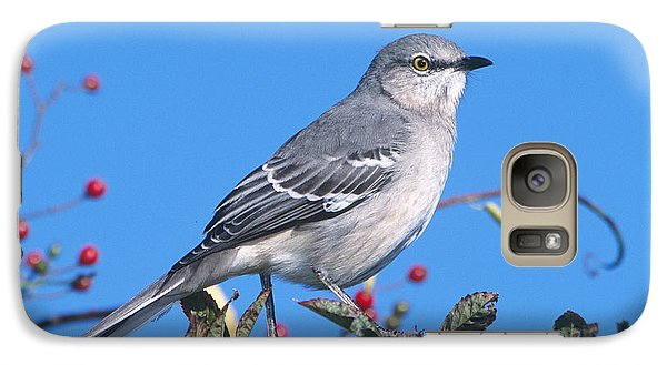 Northern Mockingbird Galaxy Case by Paul J. Fusco