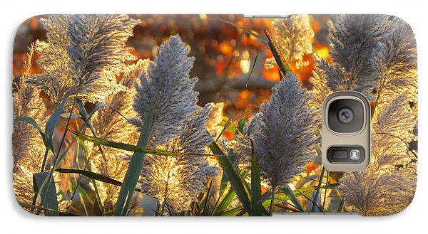 Galaxy Case featuring the photograph November Lights by Dianne Cowen