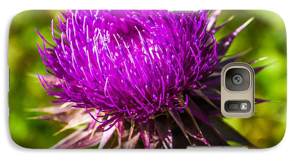 Galaxy Case featuring the photograph Nutans Nuance by Rhys Arithson