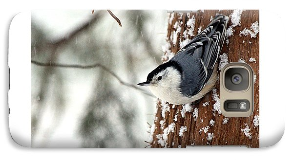 Galaxy Case featuring the photograph Nuthatch In Snow Storm by Paula Guttilla