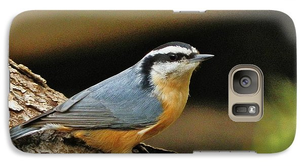 Galaxy Case featuring the photograph Nuthatch Pose by VLee Watson