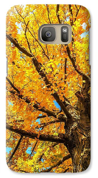Galaxy Case featuring the photograph Oak In The Fall by Mike Ste Marie