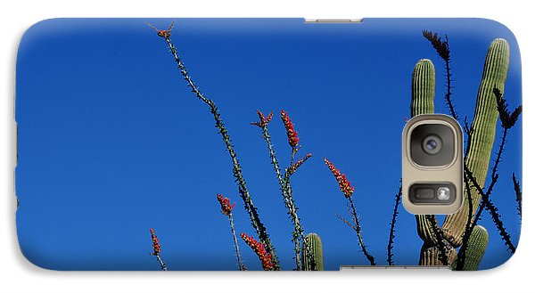 Galaxy Case featuring the photograph Ocotillo And Saguaro by Diane Lent
