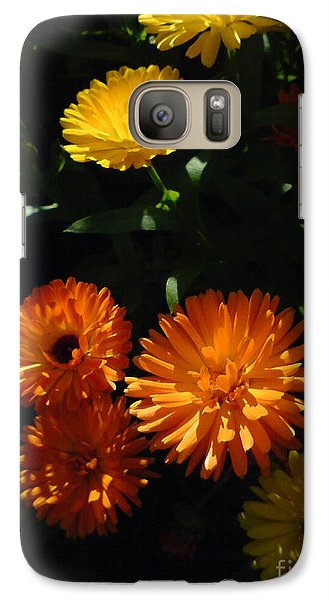 Galaxy Case featuring the photograph Old-fashioned Marigolds by Martin Howard