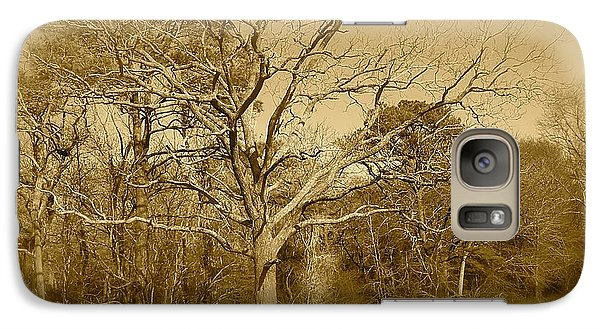 Galaxy Case featuring the photograph Old Haunted Tree In Sepia by Amazing Photographs AKA Christian Wilson