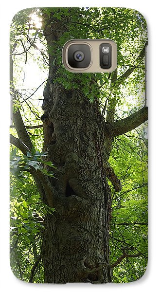 Galaxy Case featuring the photograph Old Man Of The Forest by Deborah Fay