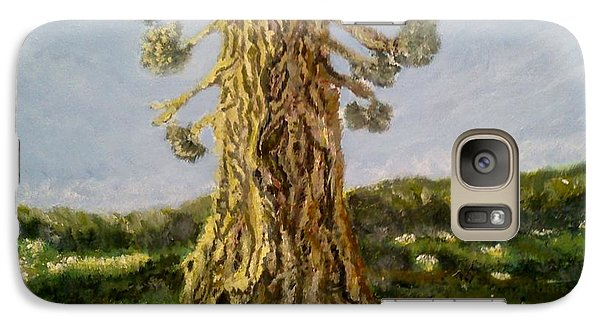 Galaxy Case featuring the painting Old Tree In Spring Light by Felicia Tica