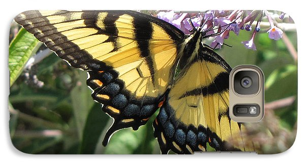 Galaxy Case featuring the photograph Old World Swallowtail by Jennifer Wheatley Wolf