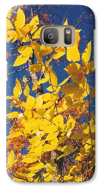 Galaxy Case featuring the photograph 'ole Yeller by Jesse Ciazza