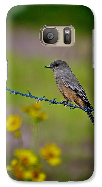 Galaxy Case featuring the photograph Say's Phoebe by Britt Runyon