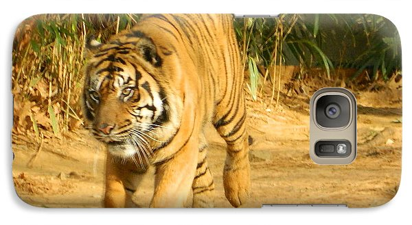 Galaxy Case featuring the photograph On The Prowl by Emmy Marie Vickers