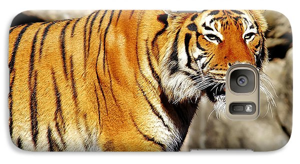 Galaxy Case featuring the photograph On The Prowl by Jason Politte
