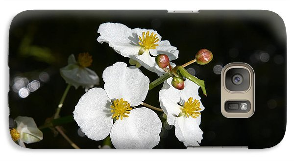 Galaxy Case featuring the photograph On The Shore Line by Denyse Duhaime