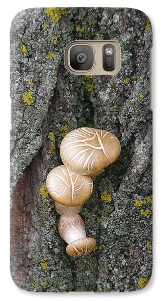 Galaxy Case featuring the photograph Opportunistic Fungi by Sheila Byers