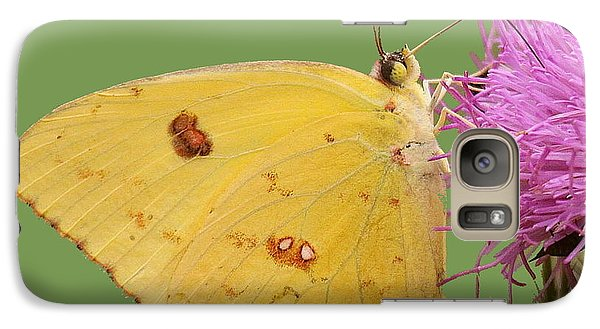 Galaxy Case featuring the photograph Orange Barred Sulphur by Myrna Bradshaw