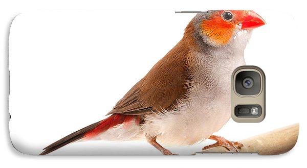 Galaxy Case featuring the photograph Orange-cheeked Waxbill Estrilda Melpoda by David Kenny
