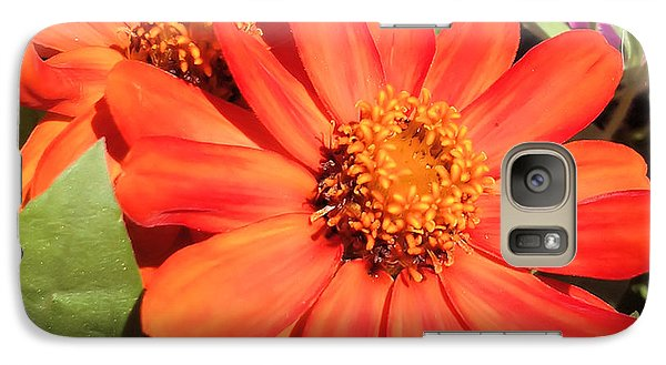 Galaxy Case featuring the photograph Orange Daisy In Summer by Luther Fine Art