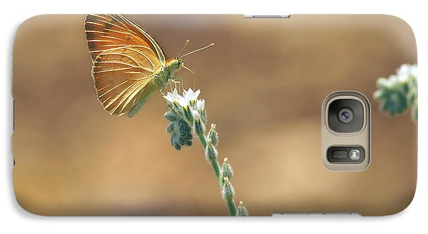 Galaxy Case featuring the photograph Orange Day by Meir Ezrachi