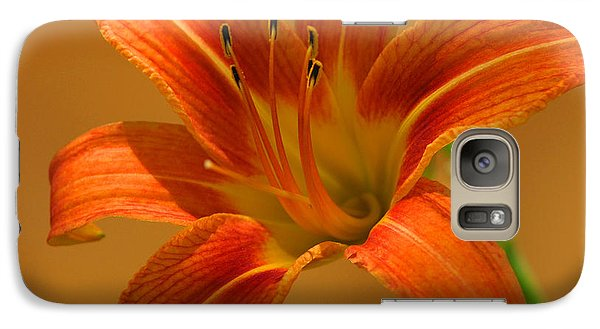 Galaxy Case featuring the photograph Orange Daylily by Olivia Hardwicke