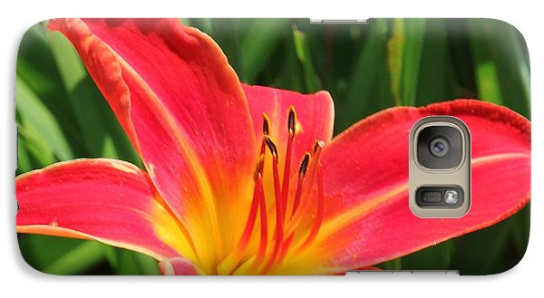 Galaxy Case featuring the photograph Orange Flower by Bill Woodstock