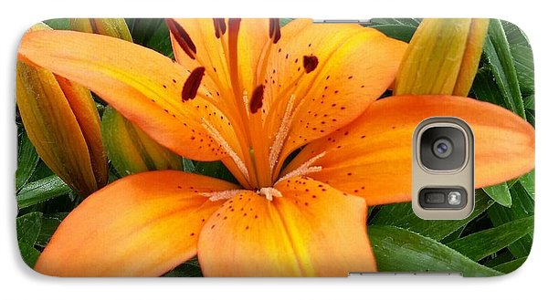 Galaxy Case featuring the photograph Orange Flower by Rose Wang