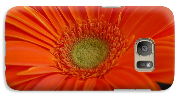 Galaxy Case featuring the photograph Orange Gerber Daisy by Patrick Shupert