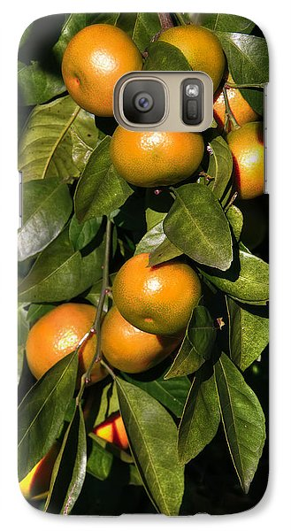 Galaxy Case featuring the photograph Orange by Gouzel -