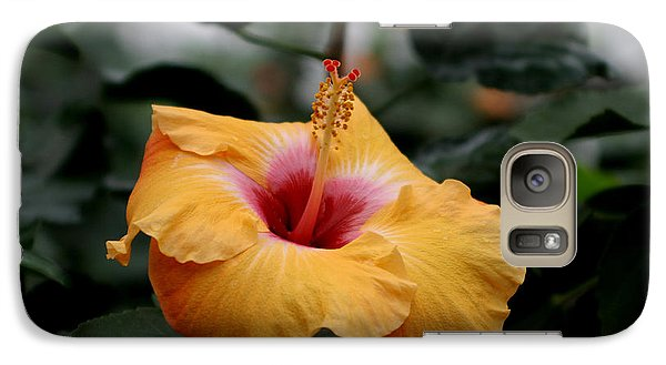 Galaxy Case featuring the photograph Orange Hibiscus by Living Color Photography Lorraine Lynch
