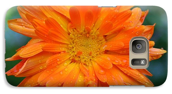 Galaxy Case featuring the photograph Orange Juice by Debra Kaye McKrill