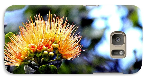 Galaxy Case featuring the photograph Orange Lehua On Volcano Ranch by Lehua Pekelo-Stearns