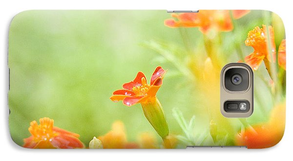Galaxy Case featuring the photograph Orange Meadow by Ann Lauwers