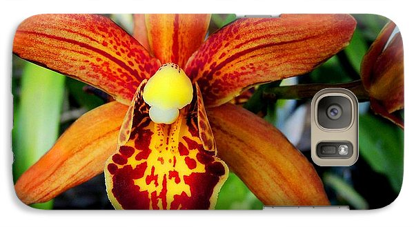 Galaxy Case featuring the photograph Orange Orchid by Kristine Merc