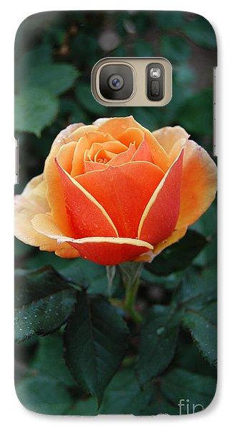 Galaxy Case featuring the photograph Orange Rose by Eva Kaufman