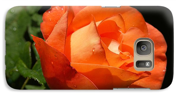 Galaxy Case featuring the photograph Orange Rose by Haleh Mahbod