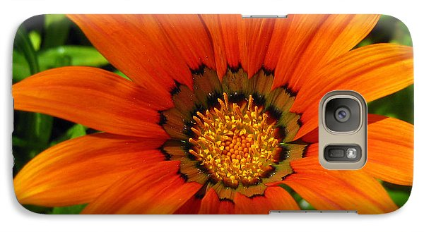 Galaxy Case featuring the photograph Orange Sunshine by Janice Westerberg