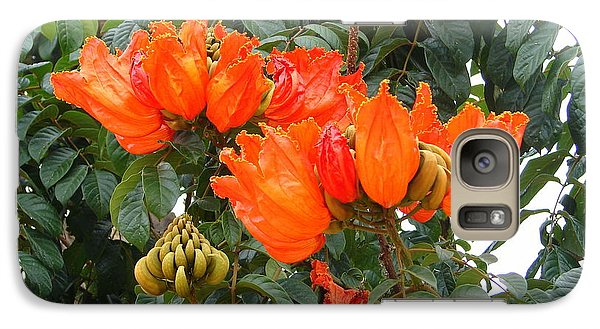 Galaxy Case featuring the photograph Orange Tree Blossoms by Lew Davis