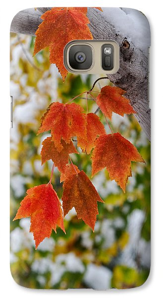 Galaxy Case featuring the photograph Orange White And Green by Ronda Kimbrow
