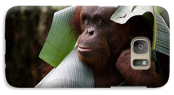 Galaxy Case featuring the photograph Orangutan by Zoe Ferrie