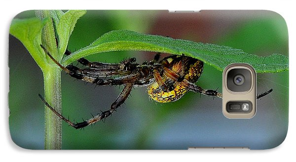 Galaxy Case featuring the photograph Orb Weaver Spider by Karen Slagle