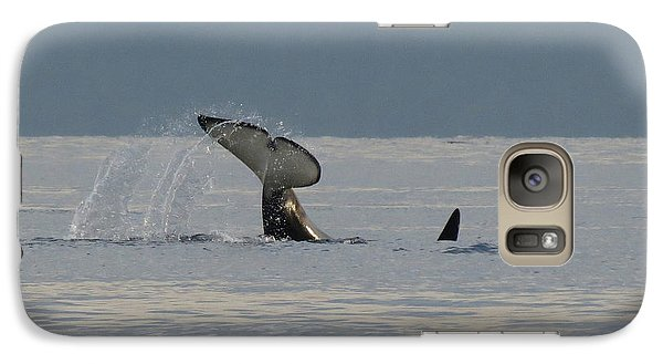 Galaxy Case featuring the photograph Orca At Sunset by Gayle Swigart