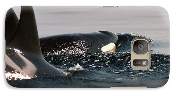 Galaxy Case featuring the photograph Orcas/killer Whales Off The San Juan Islands 1986 by California Views Mr Pat Hathaway Archives