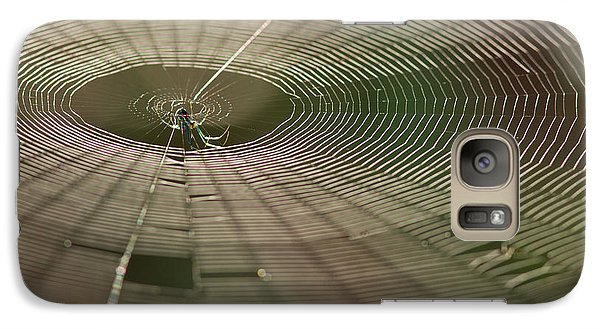 Galaxy Case featuring the photograph Orchard Orbweaver #1 by Paul Rebmann
