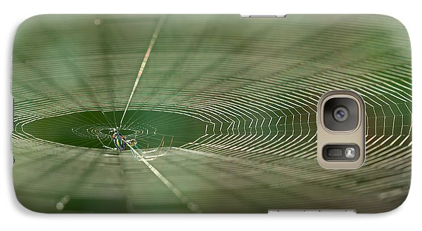 Galaxy Case featuring the photograph Orchard Orbweaver #2 by Paul Rebmann