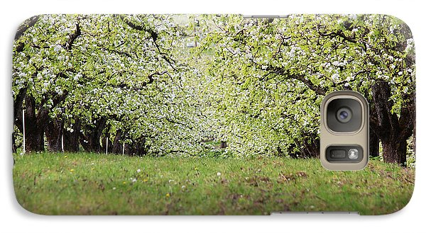 Galaxy Case featuring the photograph Orchard by Patricia Babbitt