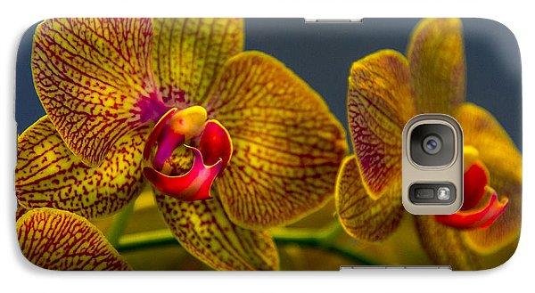 Orchid Color Galaxy S7 Case