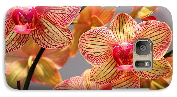 Galaxy Case featuring the photograph Orchid by Judy Palkimas