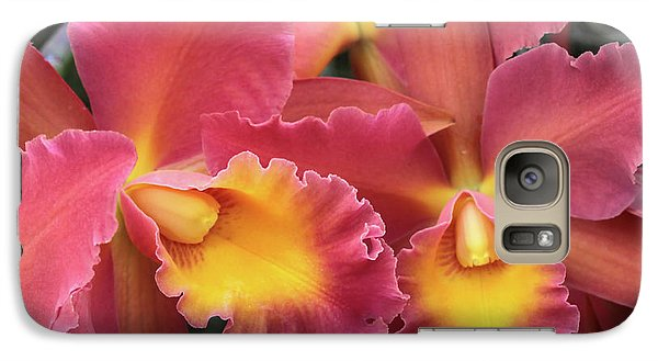 Galaxy Case featuring the photograph Orchids Ablaze by Harold Rau