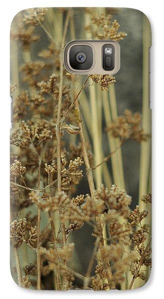Galaxy Case featuring the photograph Oregano In Winter by Rebecca Sherman
