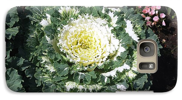 Galaxy Case featuring the photograph Ornamental Cabbage by Sheila Byers