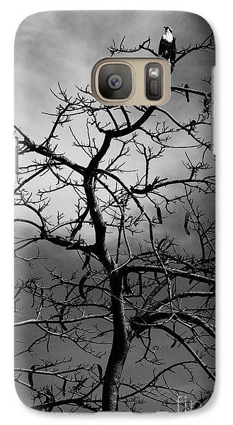Galaxy Case featuring the photograph Osprey Atop A Poinciana by Lynda Dawson-Youngclaus